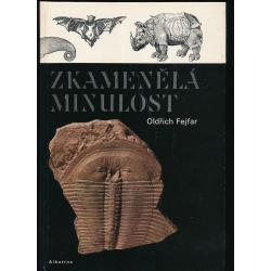 Zkamenělá minulost