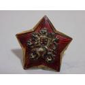 Čepicový odznak - hvězda